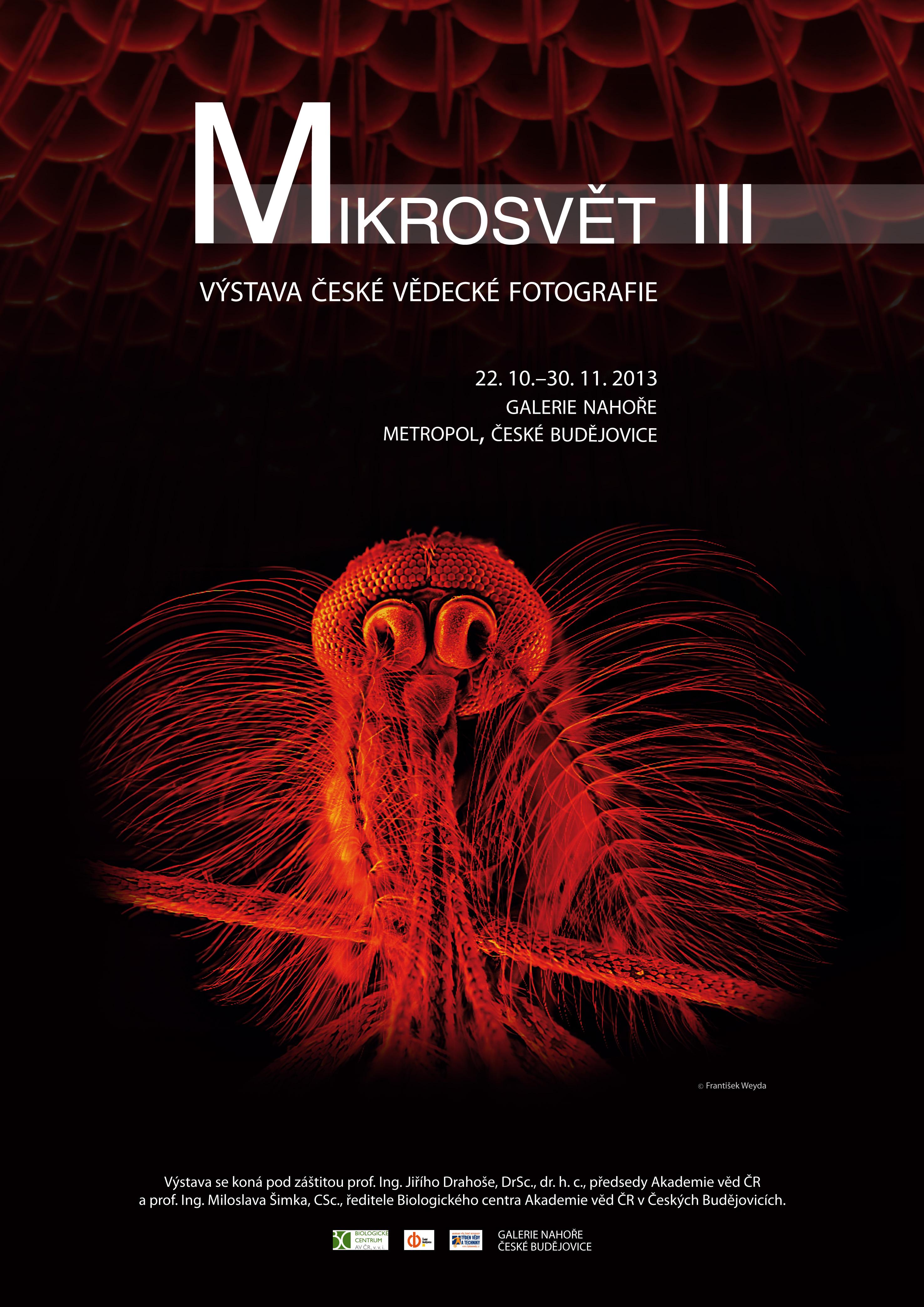Plakat_Mikrosvet_A2